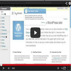 Brand New WordPress PLR Video